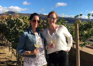 valle de guadalupe activities wine tours