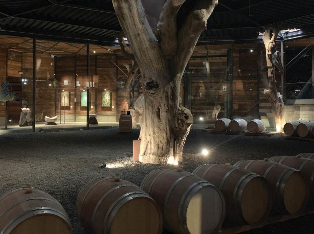 bruma vineyard indoor 1