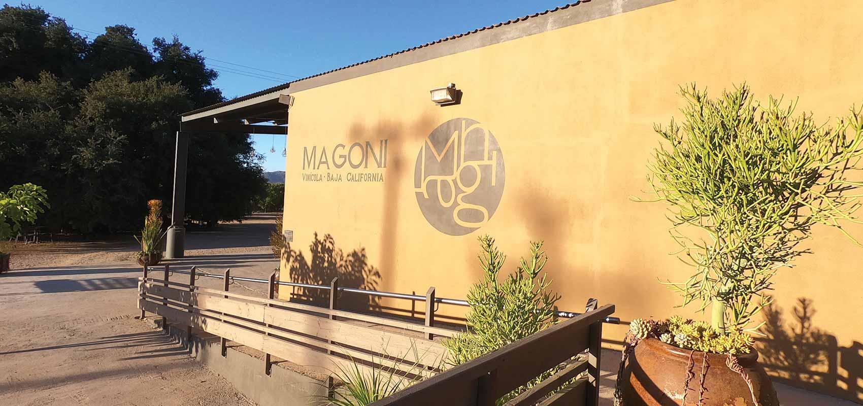 Casa Magoni Vineyard