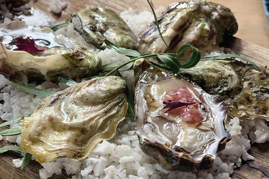 Deckman's Valle de Guadalupe oysters