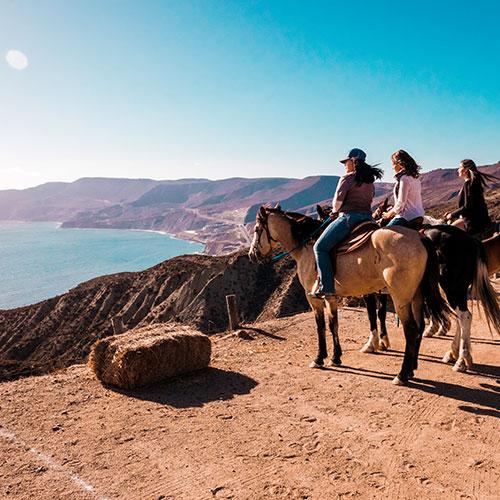 Experiences - Horseback ride