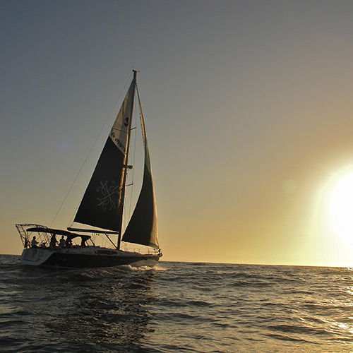 Experiences - Sailing in Ensenada