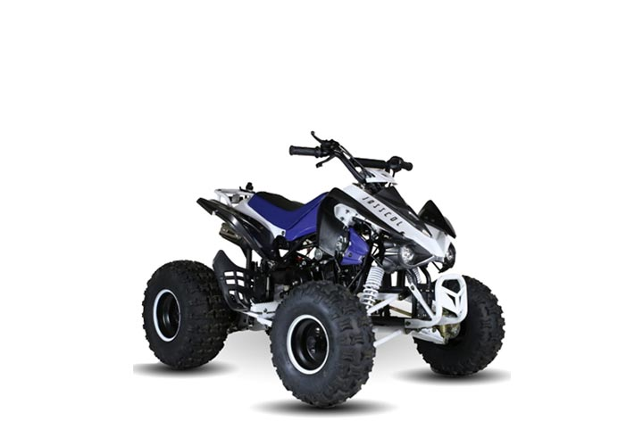 Experience Off Road 4 wheeler